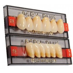 Tablilla Acry Plus V Dientes Inferiores
