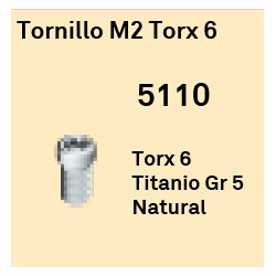 Tornillo M2 Torx 6 Octógono Interno