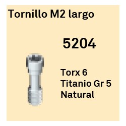 Tornillo M2 Largo Octógono Interno