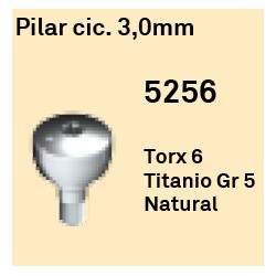 Pilar Cic. 3.0 mm Octógono Interno