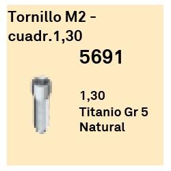Tornillo M2 - Cuadr 1,30 Héxagono Externo
